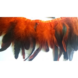 Galon plumes orange X 50 cm