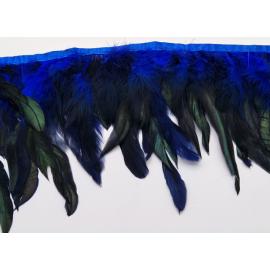 Galon plumes bleu roy X 50 cm