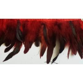 Galon plumes rouge X 50 cm