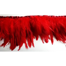 Galon plumes rouge